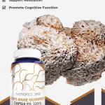Lions Mane Mushroom Capsules
